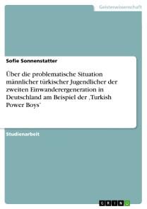 Über die problematische Situation männlicher türkischer Jugendlicher der zweiten Einwanderergeneration in Deutschland am Beispiel der 'Turkish Power Boys'