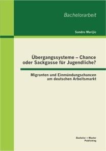 Übergangssysteme - Chance oder Sackgasse für Jugendliche? Migranten und Einmündungschancen am deutschen Arbeitsmarkt